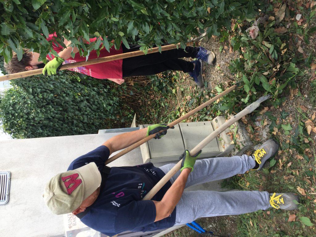 ragazzi raccolgono le foglie